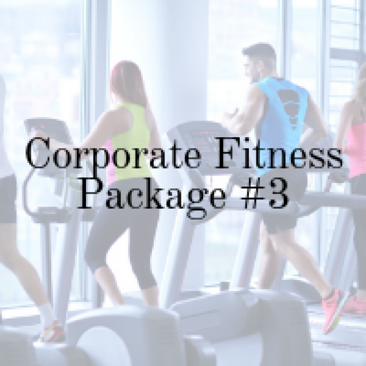 Picture of Corporate Office Used Gym Package - 3