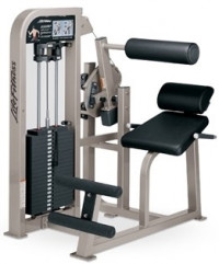 Life Fitness Pro 2 Back Extension -RM
