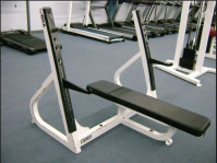 Cybex Olympic Flat Bench -CS