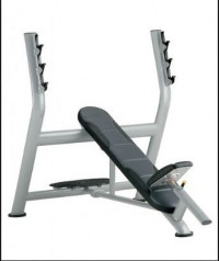 Cybex Olympic Incline Bench - CS