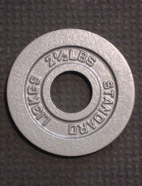 Body Solid 35lb Rubber Olympic Grip Plate- CS