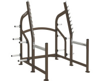 Cybex Squat Rack- CS