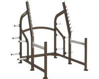 Cybex Squat Rack- CS