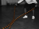 Picture of VTX TRAINING ROPES - 40ft